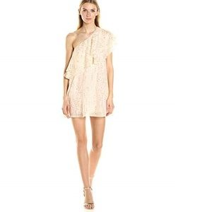 NWT Rachel Zoe Leigh One shoulder fil coupe dress